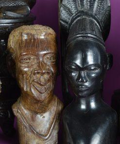 Japans Afrikaans geslacht