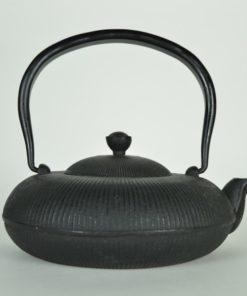 Japanse theepot gietijzer
